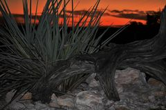 Paisaje anaranjado de la puesta del sol imagenes de archivo