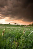 Paisaje antes de la tormenta Imagen de archivo