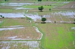 Paisaje archivado arroz visto desde arriba; kanchanaburi Tailandia Foto de archivo