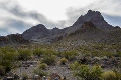 Paisaje Arizona del desierto Imagen de archivo libre de regalías