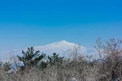 Paisaje armenio 2 Imagen de archivo libre de regalías