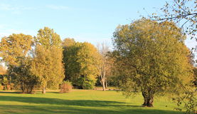 Paisaje asoleado del otoño Fotografía de archivo libre de regalías