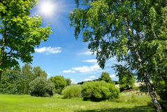 Paisaje asoleado hermoso del verano Imagen de archivo libre de regalías
