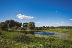 Paisaje asoleado hermoso del verano Cielo azul y nubes mullidas blancas foto de archivo libre de regalías