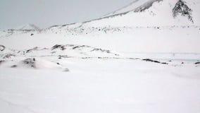 Paisaje asombroso del desierto del hielo en el ártico metrajes