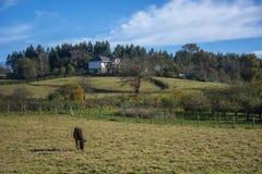 Paisaje asturiano 109 Fotografía de archivo
