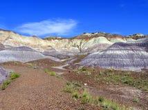 Paisaje aterrorizado de Forest National Park, Arizona, los E.E.U.U. Fotos de archivo libres de regalías