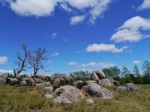 Paisaje australiano con un cielo azul Imagen de archivo libre de regalías