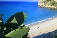 Paisaje azul de la playa del verano Fotografía de archivo libre de regalías