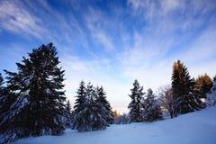 Paisaje búlgaro de la nieve Imagen de archivo libre de regalías