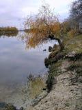 Paisaje, banco del río Fotografía de archivo