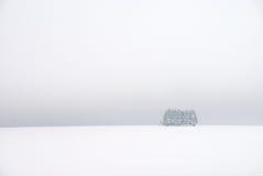 Paisaje blanco del invierno