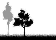 Paisaje blanco y negro stock de ilustración