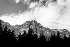 Paisaje blanco y negro de la montaña fotografía de archivo