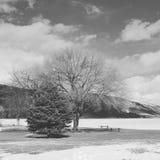 Paisaje blanco y negro del lago del invierno Foto de archivo
