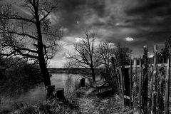 Paisaje blanco y negro del otoño Imágenes de archivo libres de regalías