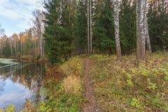 Paisaje brillante del agua del otoño Fotos de archivo