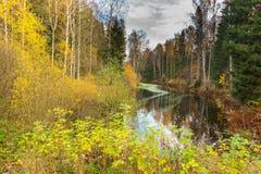 Paisaje brillante del agua del otoño fotografía de archivo libre de regalías