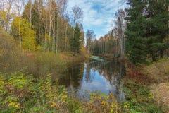 Paisaje brillante del agua del otoño foto de archivo libre de regalías