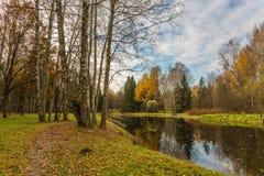 Paisaje brillante del agua del otoño fotografía de archivo