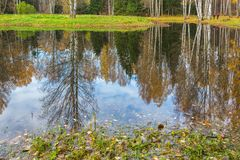 Paisaje brillante del agua del otoño Foto de archivo