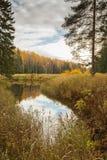 Paisaje brillante del agua del otoño Imagenes de archivo