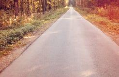 Paisaje brillante del otoño Árboles del otoño a lo largo del camino forestal tono Fotografía de archivo