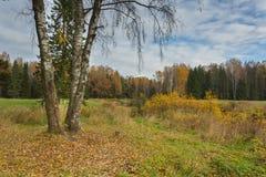 Paisaje brillante del otoño fotos de archivo