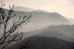 Paisaje brumoso de la ladera Foto de archivo libre de regalías