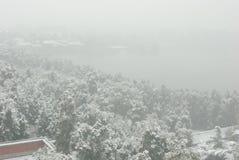 Paisaje brumoso de la nieve Foto de archivo libre de regalías