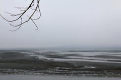 Paisaje brumoso tranquilo con las ramas del lago y de árbol Imagenes de archivo