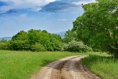 Paisaje, camino de tierra y plantaciones verdes Imágenes de archivo libres de regalías