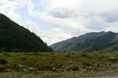 Paisaje cerca del río de Katun, república de Altai, Siberia, Rusia de la montaña imagenes de archivo