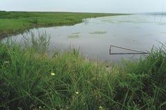 Paisaje: Charca natural del pasto con la hierba y la reflexión Fotografía de archivo libre de regalías