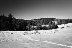 Paisaje checo del invierno en montañas del mineral con el stylization blanco y negro ideal Imagen de archivo libre de regalías