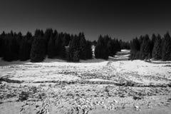 Paisaje checo del invierno en montañas del mineral con el stylization blanco y negro ideal Imagenes de archivo