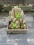 Paisaje chino del jardín Imagen de archivo libre de regalías