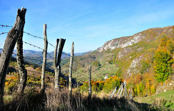Paisaje colorido de la montaña del bosque del otoño Imagenes de archivo