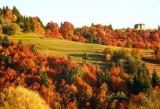 Paisaje colorido de los árboles y de los campos de las montañas del otoño imagen de archivo