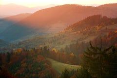 Paisaje colorido de los árboles y de los campos de las montañas del otoño foto de archivo