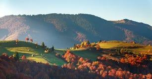 Paisaje colorido de los árboles y de los campos de las montañas del otoño imagenes de archivo
