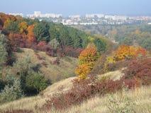 Paisaje colorido del otoño con follaje enorme foto de archivo libre de regalías