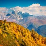 Paisaje colorido del otoño en las montañas del Cáucaso Foto de archivo libre de regalías