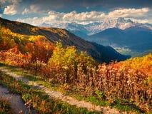 Paisaje colorido del otoño en las montañas del Cáucaso Foto de archivo