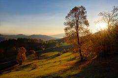 Paisaje colorido del otoño en montaña Foto de archivo libre de regalías