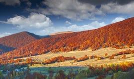 Paisaje colorido del otoño en montañas Fotos de archivo libres de regalías