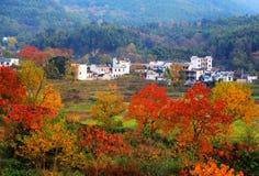 Paisaje colorido del otoño en Tachuan Imágenes de archivo libres de regalías