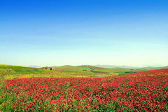 Paisaje colorido del valle. Italia Imagenes de archivo