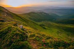 Paisaje colorido del verano en las montañas cárpatas Fotos de archivo libres de regalías