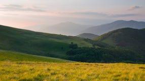 Paisaje colorido del verano en las montañas cárpatas Fotografía de archivo libre de regalías